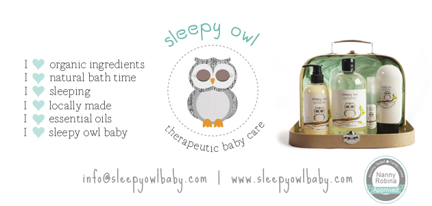 Sleepy Owl Banner