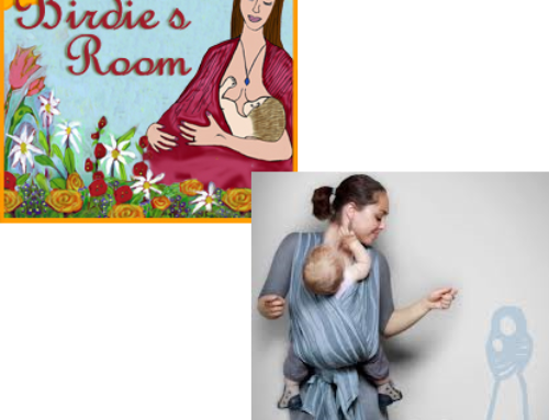 Didymos Review